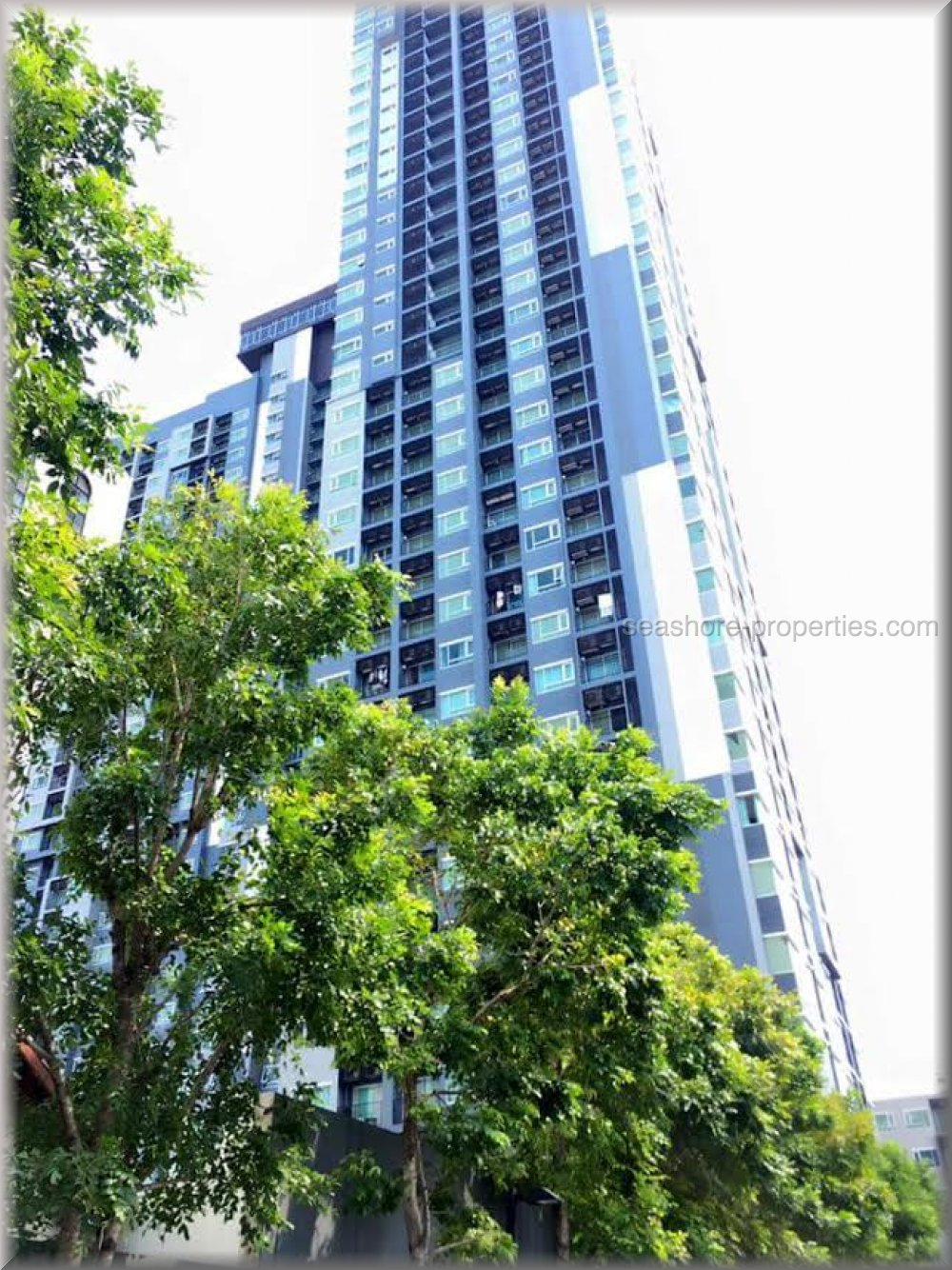 centric sea 1 bedroom     to rent in Central Pattaya Pattaya